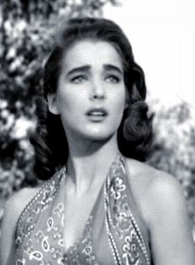 julie adams stage school